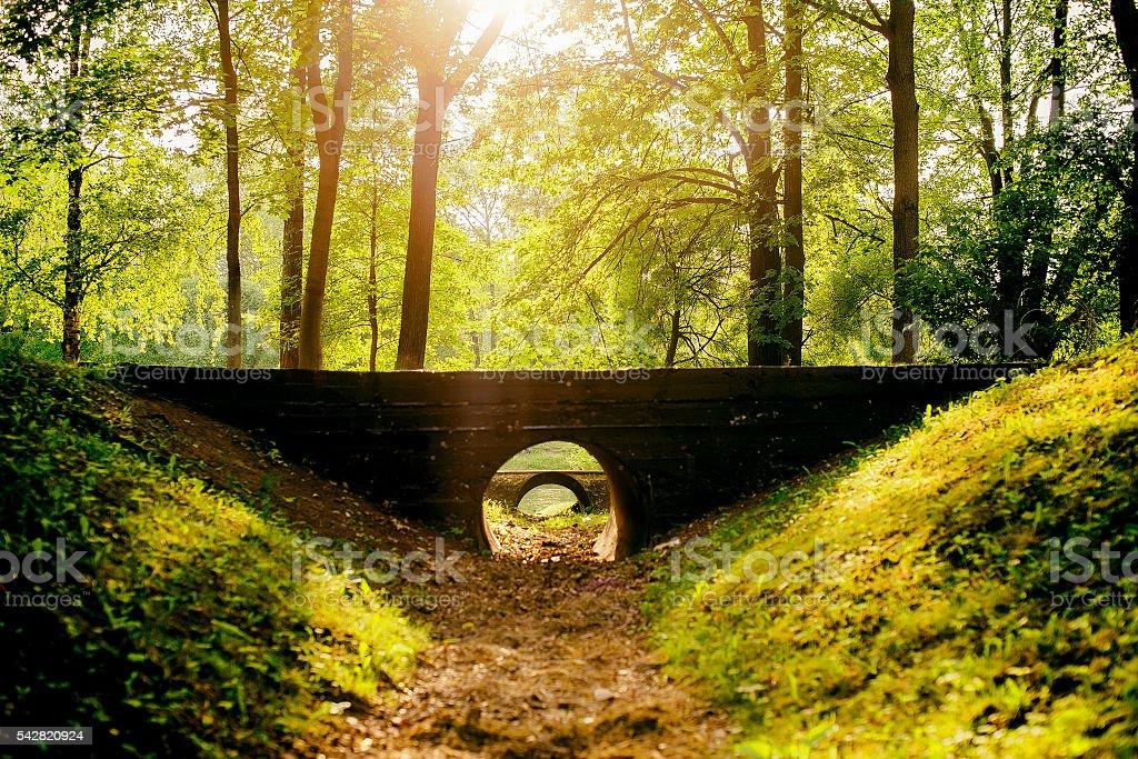 old stone bridges in ancient park stock photo