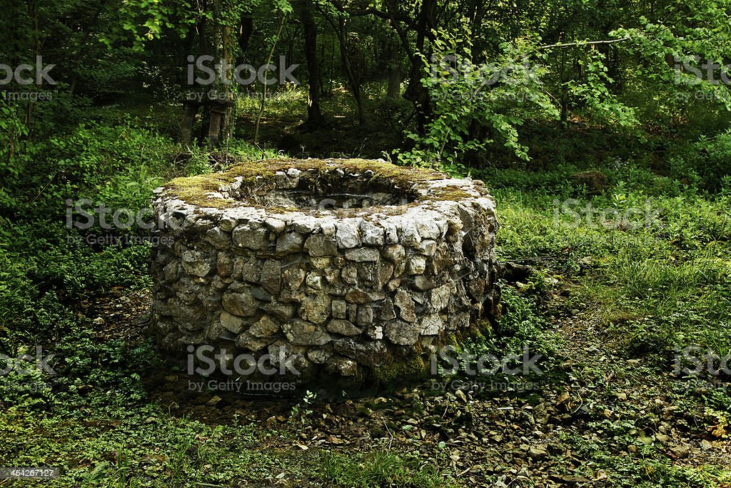 Old stone draw well in the forest stock photo