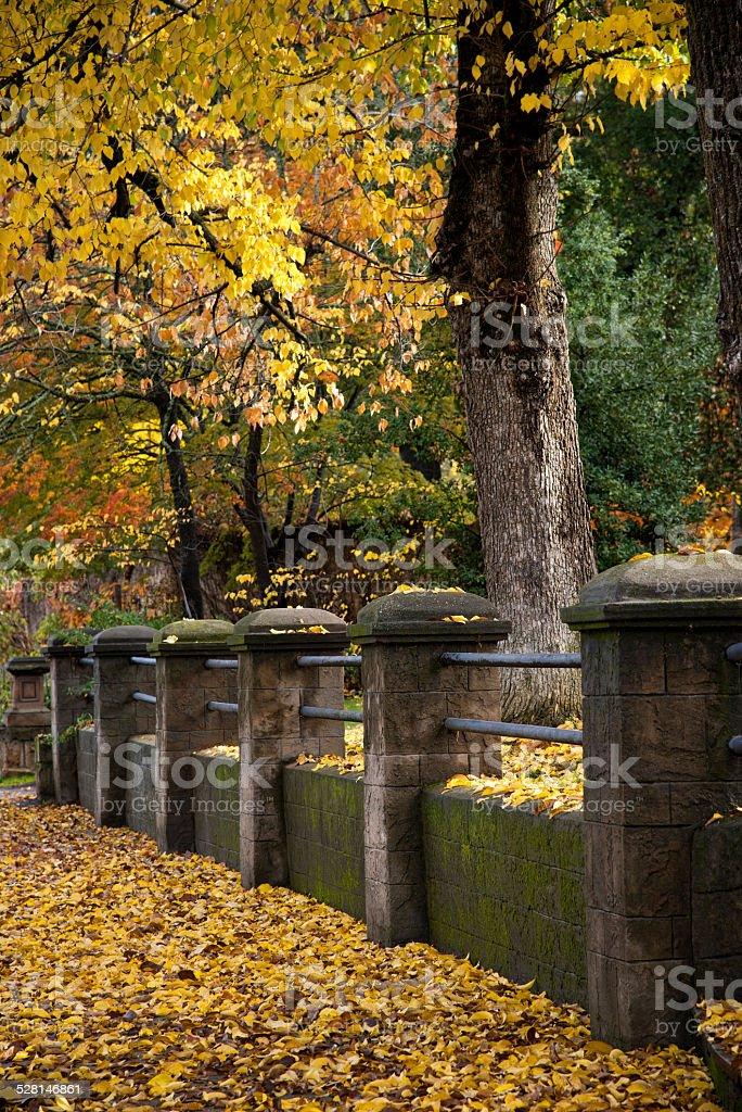 Old stone valla foto de stock libre de derechos