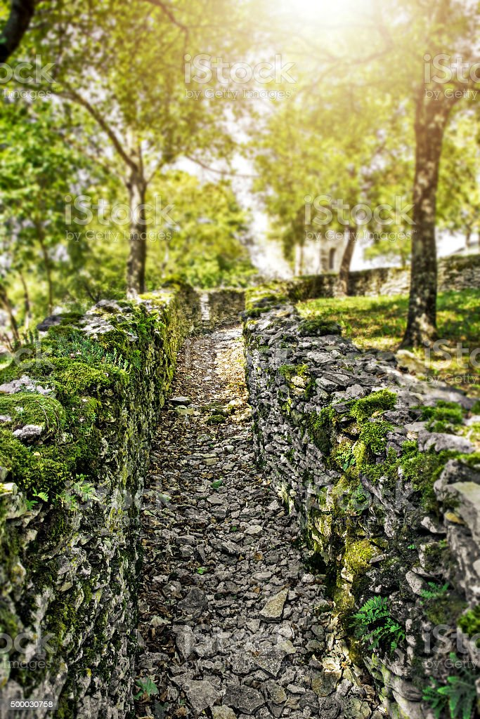 Old stone wall footpath with moss in woods with sunlight stock photo