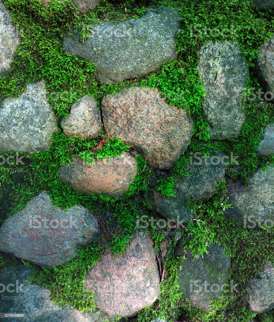 Old stone wall with moss. stock photo