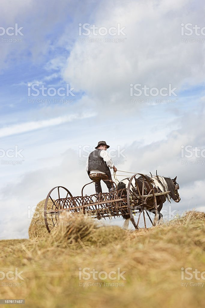 old style harvest stock photo
