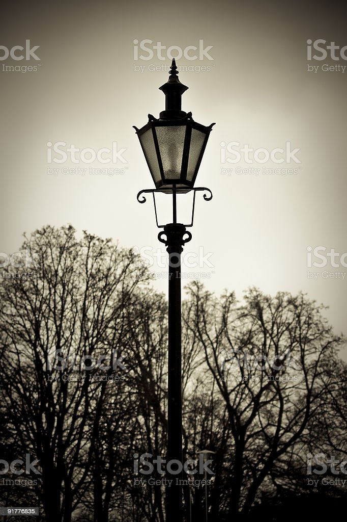 Old style street lantern with trees in background royalty-free stock photo