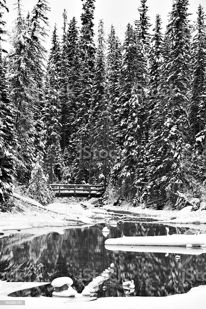 Old Style Winter Wonderland stock photo