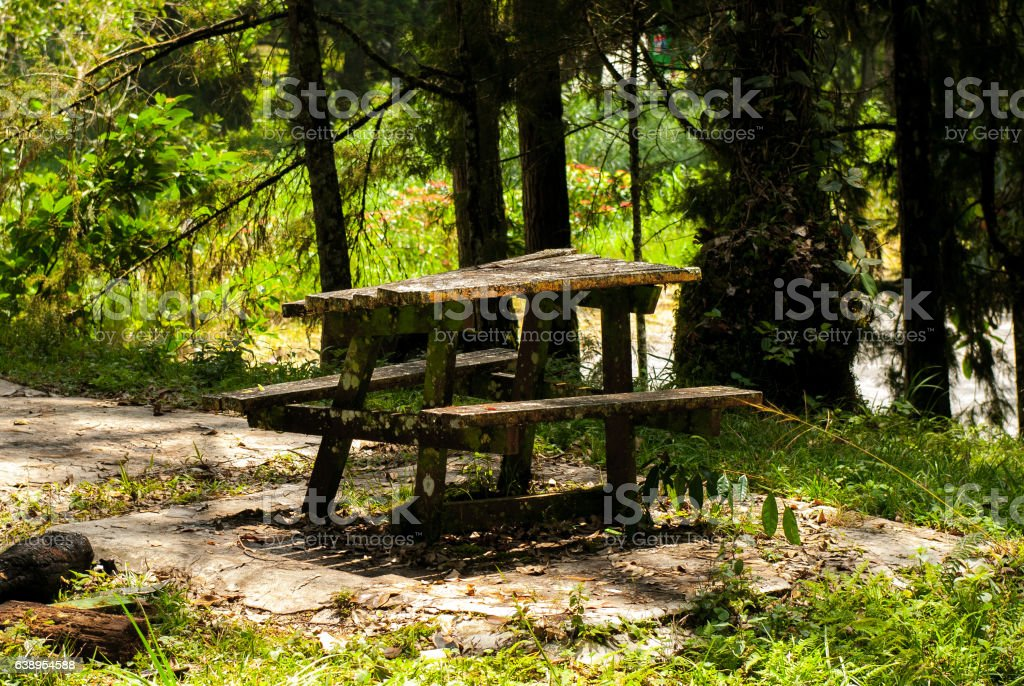 Old table in the woods stock photo