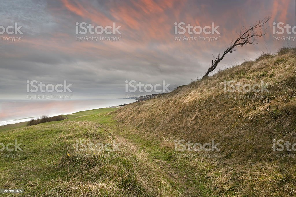 Old tank road at Omaha Beach.. stock photo