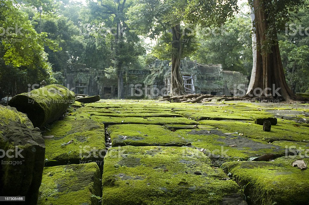 Old Temple Ruins In The Jungle Near Angkor Wat, Cambodia royalty-free stock photo