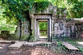 Old temples in the jungle, Angkor, Cambodia