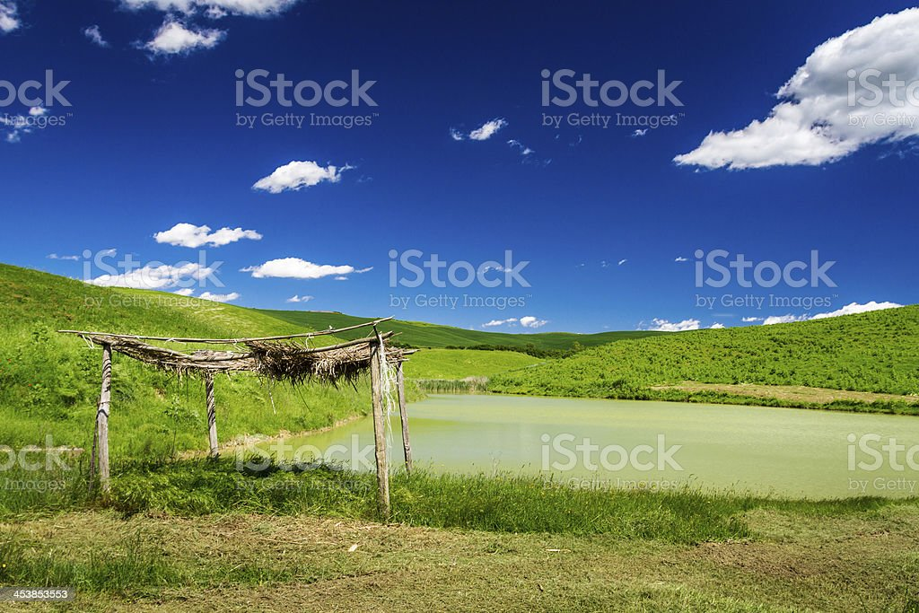 Old thatched with straw over a pond in the fields royalty-free stock photo
