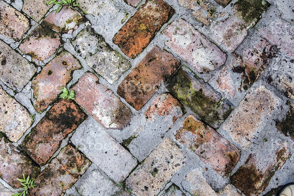 old tiles at the sidewalk with plants royalty-free stock photo