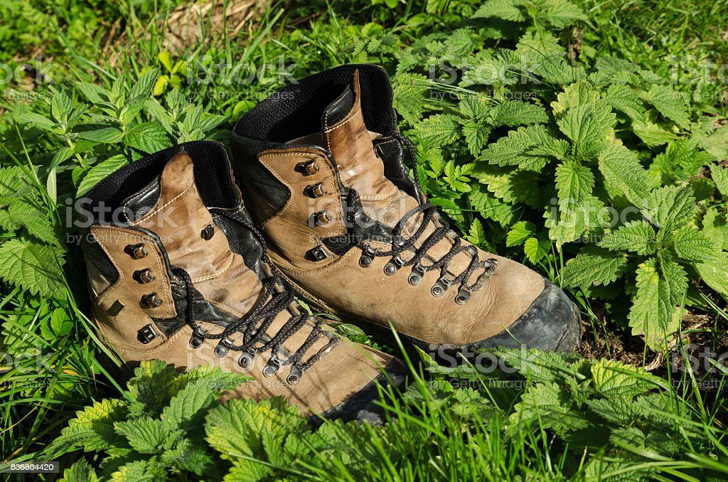 Old touristic shoes among nettle stock photo