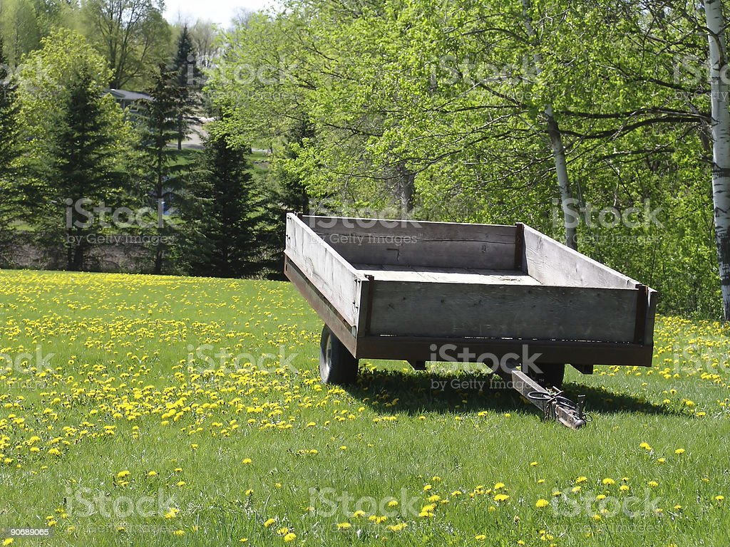 Old trailer in a field of flowers in front of a forest. royalty-free stock photo