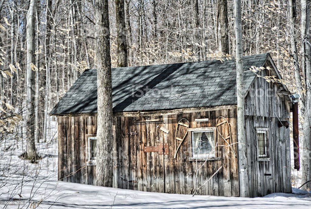 Old trapper's cabin stock photo