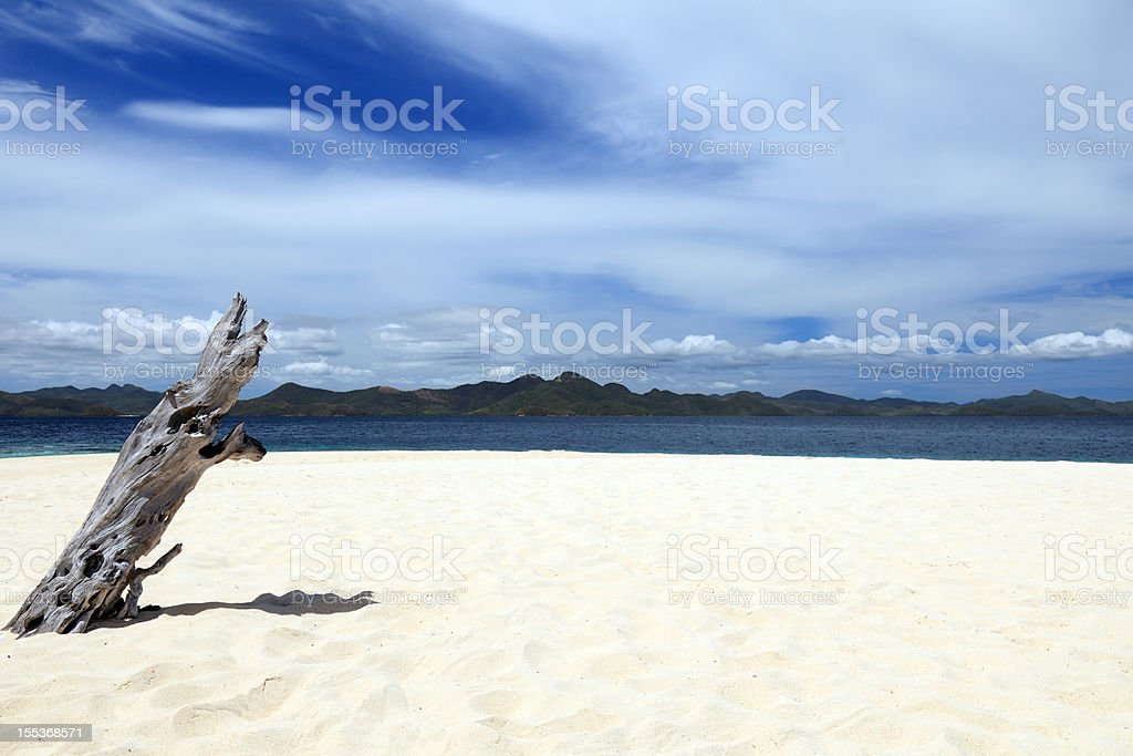 Old tree trunk on the beautiful beach royalty-free stock photo
