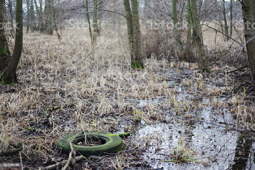 old tyre in the wood royalty-free stock photo