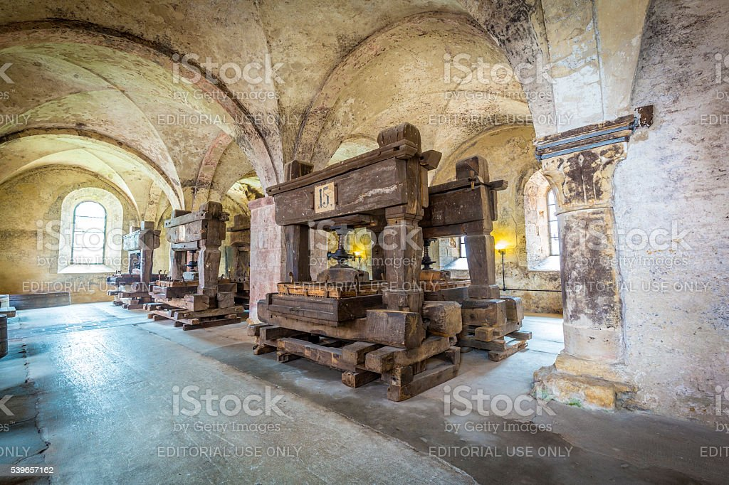 old vinery in Eberbach stock photo