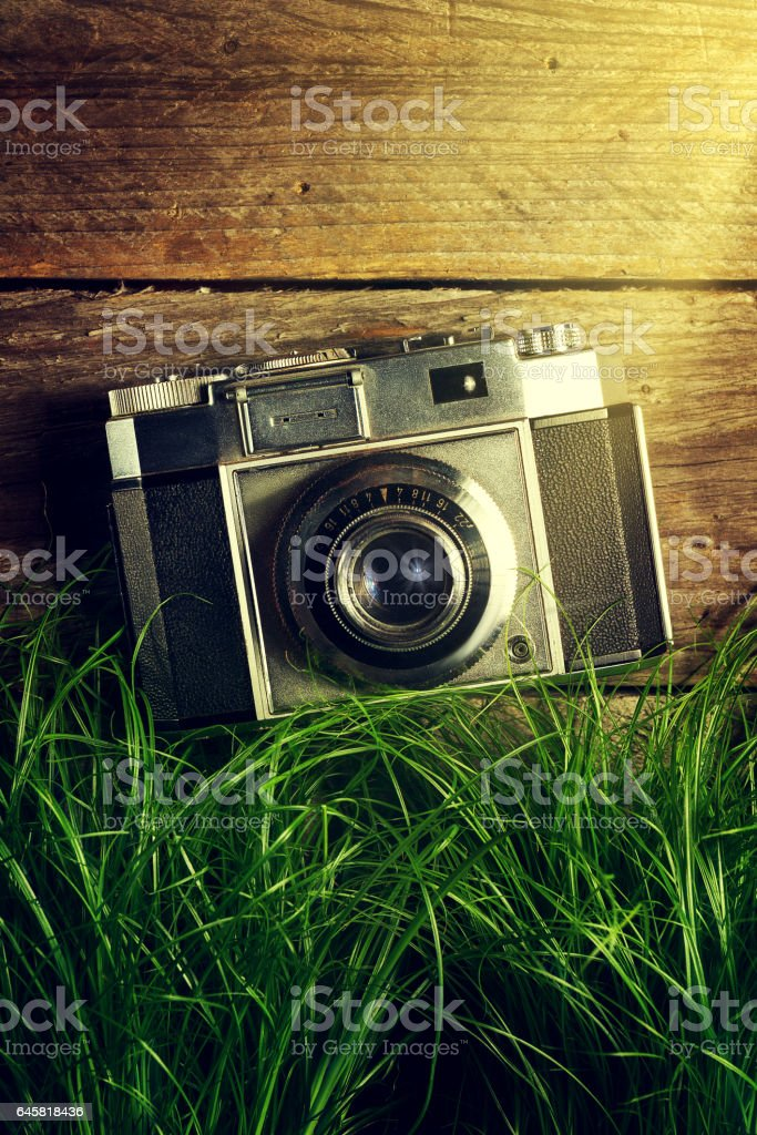 Old Vintage Camera in Green Grass with Light Beams on Wooden Background. stock photo