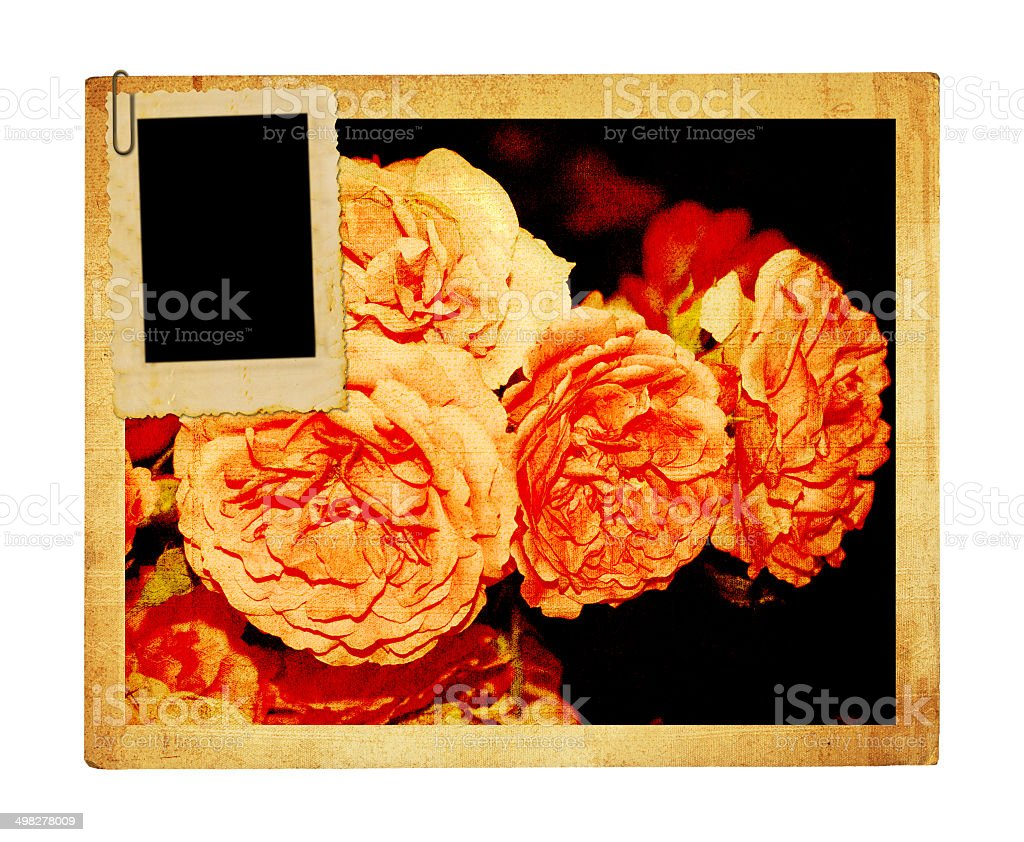 Old vintage card with a bouquet of beautiful pink roses stock photo
