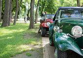 Old vintage cars parked in the forrest