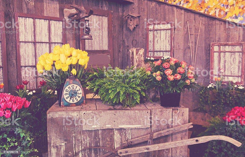 Old Vintage Flower Display stock photo