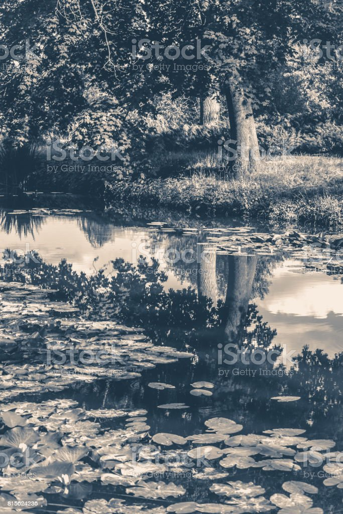 Old vintage photo. Lake river reflected clouds sky stock photo
