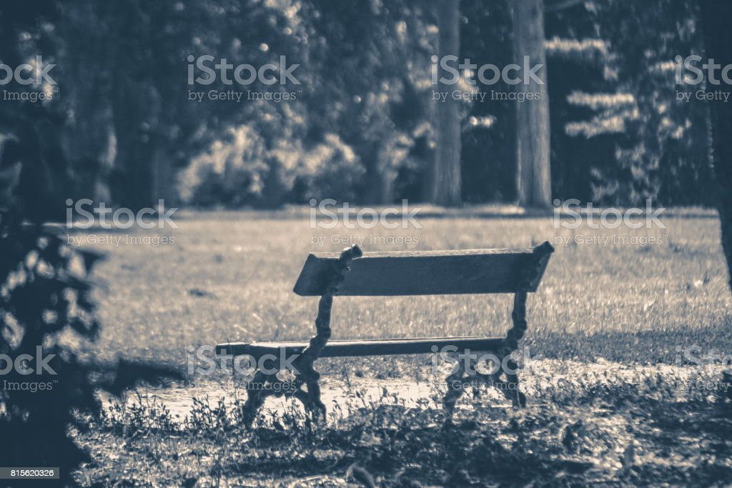 Old vintage photo. Park bench sunny day summer stock photo