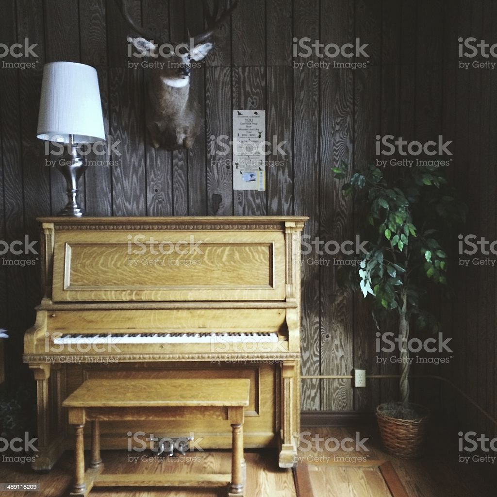 Old Vintage Piano and Taxidermy Animal Head in Wooden Cabin stock photo