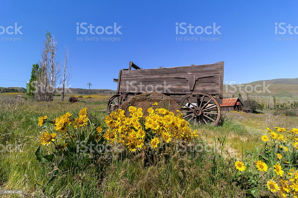 Old Wagon at Columbia Hills State Park stock photo