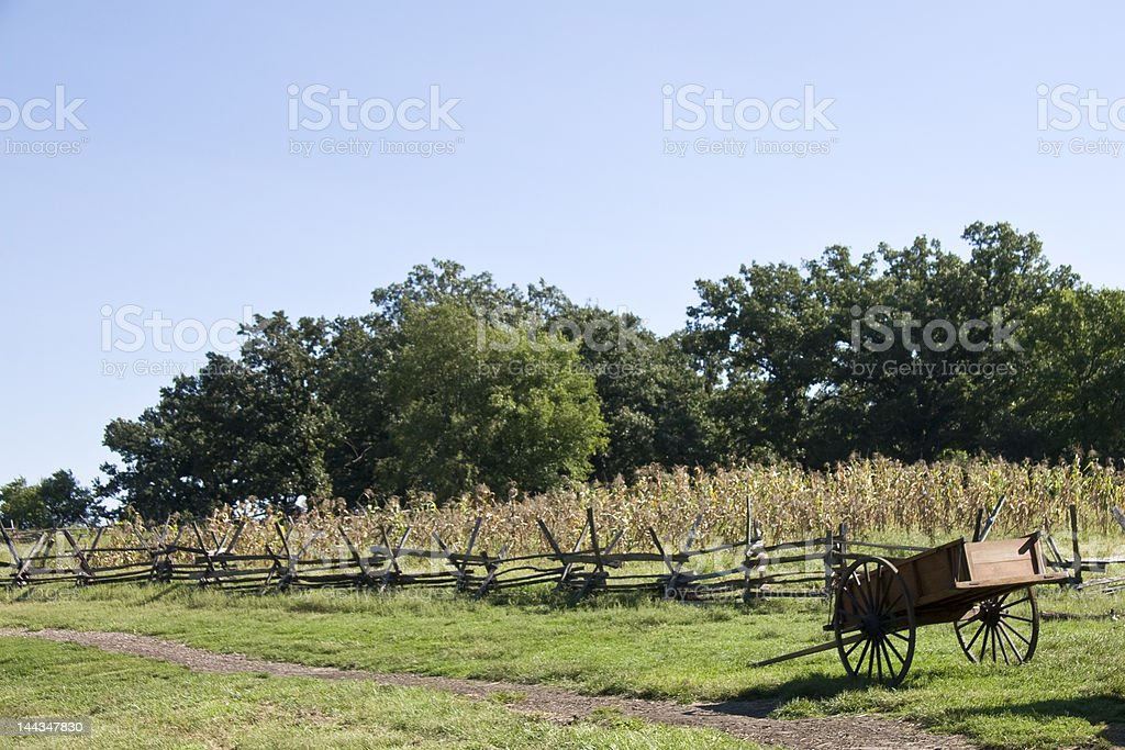 Old Wagon in field royalty-free stock photo
