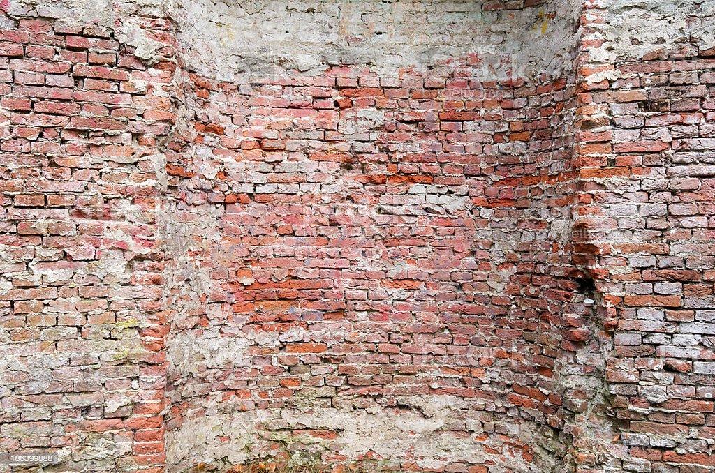旧壁のシェルケイヴます。 ロイヤリティフリーストックフォト