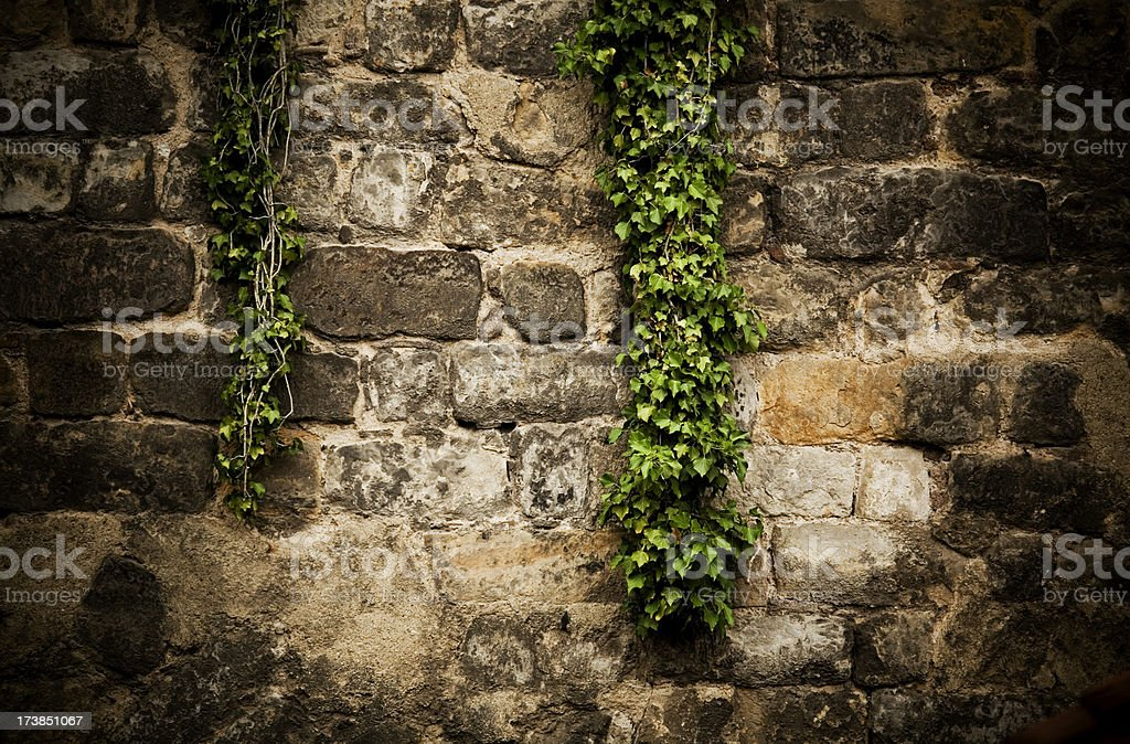 Old Wall royalty-free stock photo