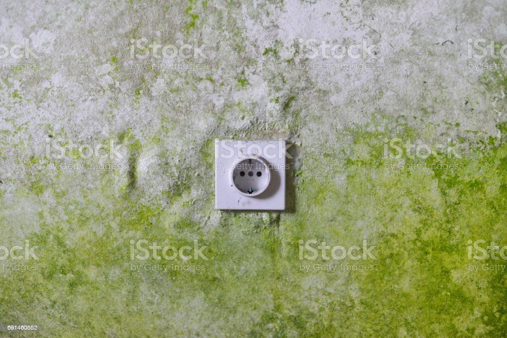 Old wall with electric plug stock photo