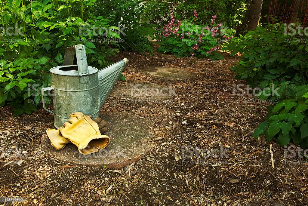 Old watering can and gloves sit on a Garden Path royalty-free stock photo