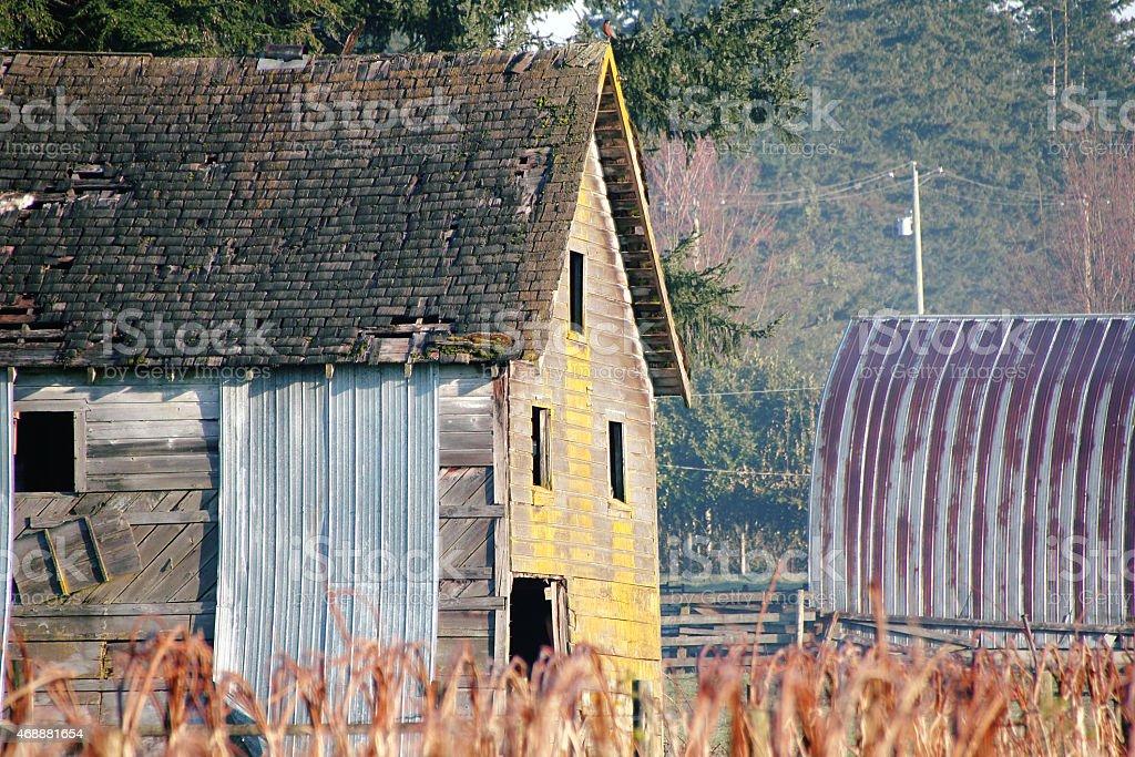 Old Weathered Barn stock photo