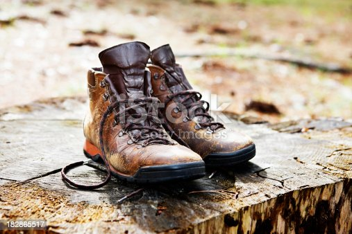 Old Well Used Hiking Boots On Tree Stump In Clearing stock photo ...