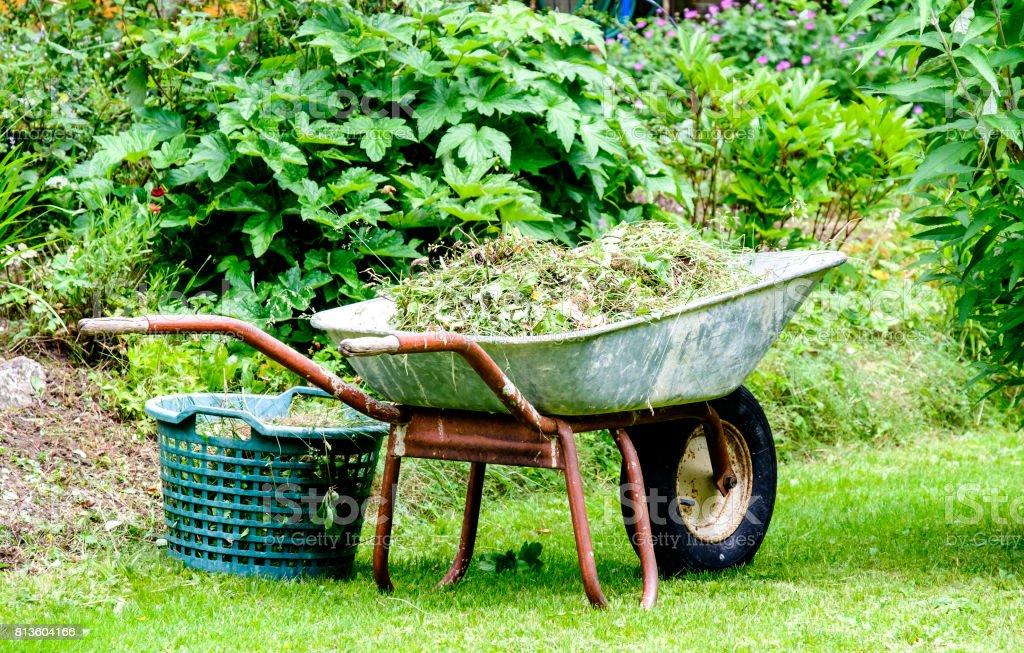 old wheelbarrow stock photo