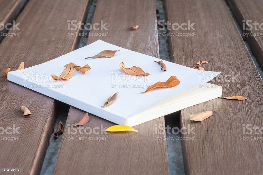 Old white book on wooden table with dried leaves stock photo