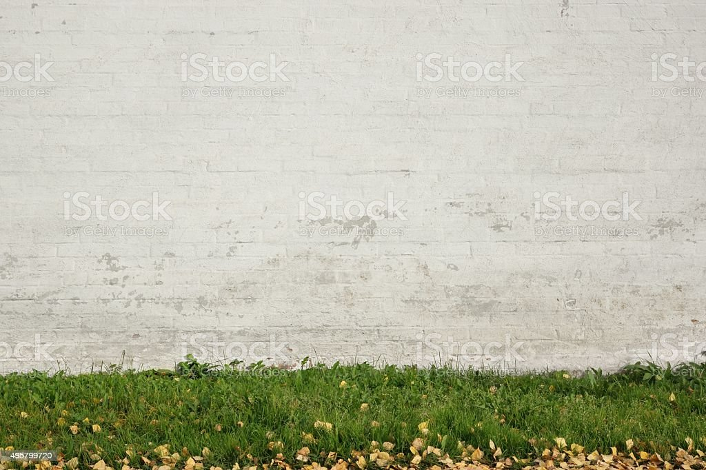 Old White Brick Painted Wall Abd Green Grass Background stock photo