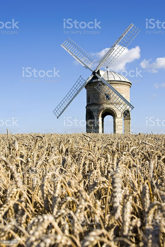 Old windmill in a wheat field, with blue sky stock photo