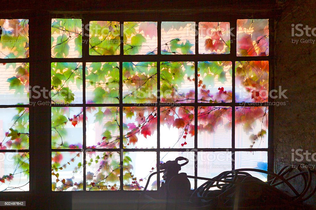 old window with leaves in indian summer colors stock photo