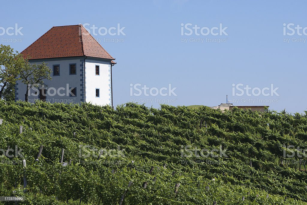 Old winery on the hill royalty-free stock photo