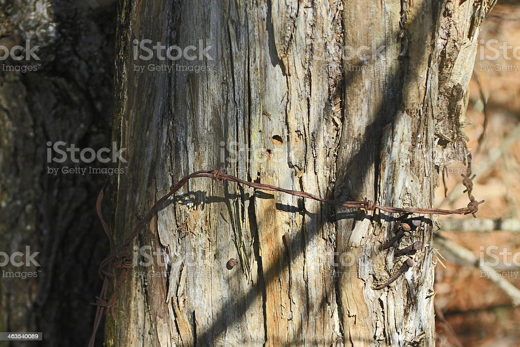 Old wire 2 royalty-free stock photo