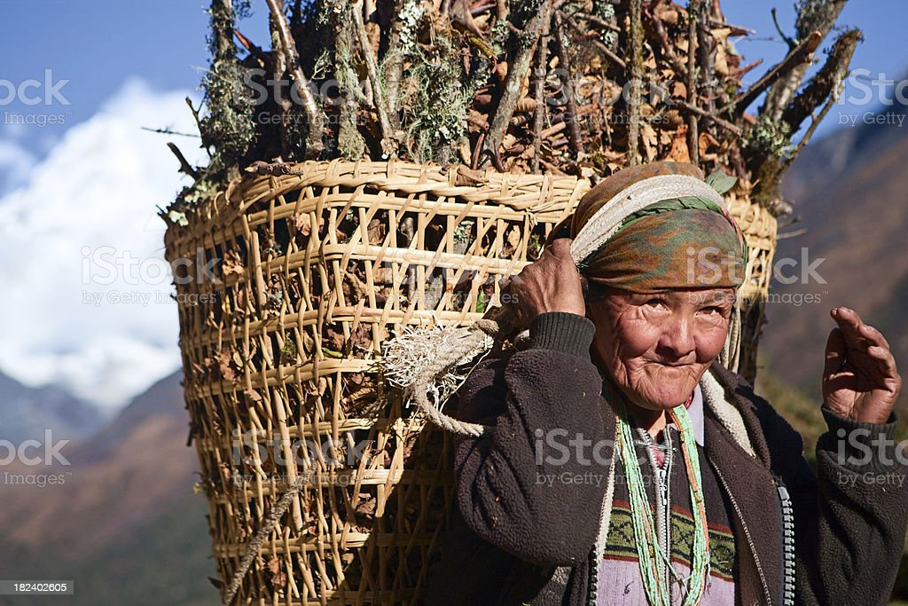 Old woman carrying basket of brushwood royalty-free stock photo