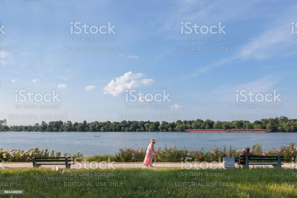 Old woman walking in front of Danube river, in Belgrade, on Donji Dorcol district,  Serbia, a barge passing by on the water stock photo