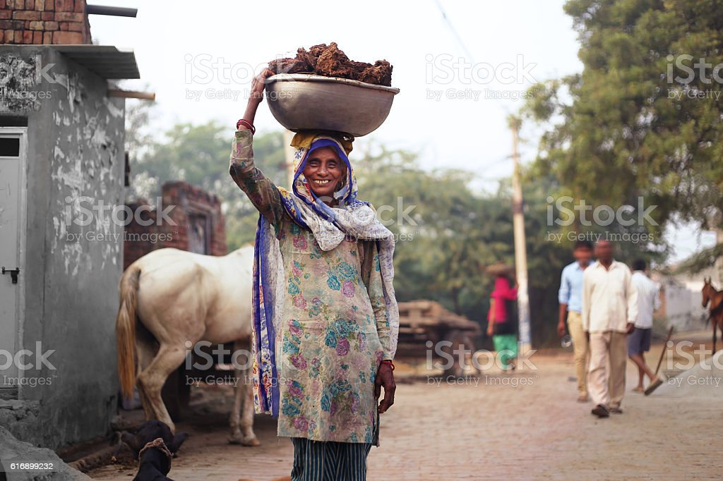 Old women carrying cow dung stock photo