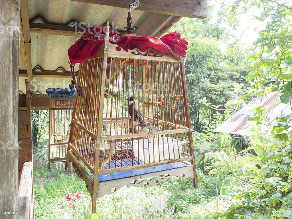 Old Wood Birdcage royalty-free stock photo