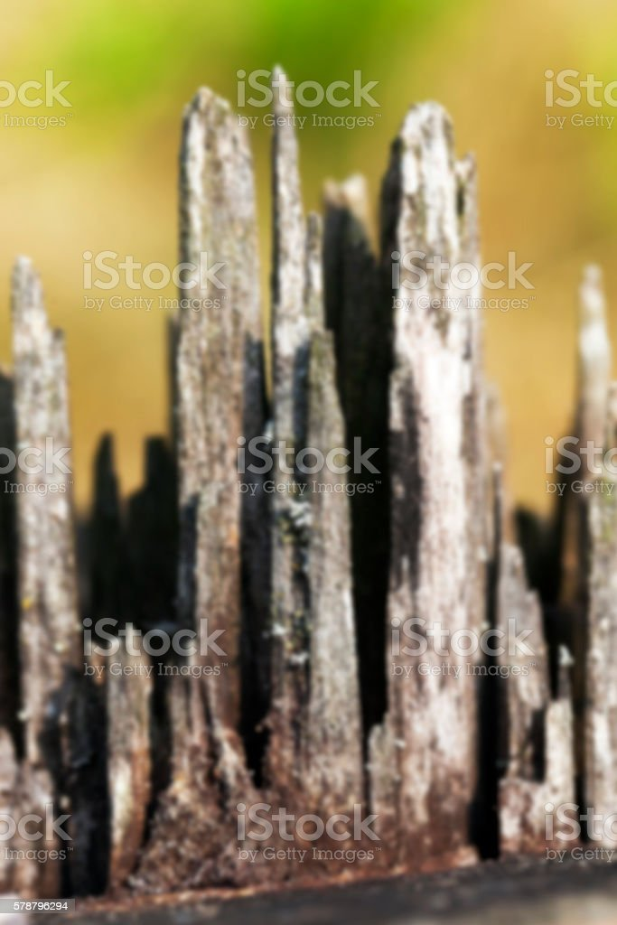 old wood fracture stock photo