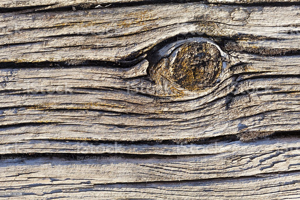 Old Wood Plank royalty-free stock photo
