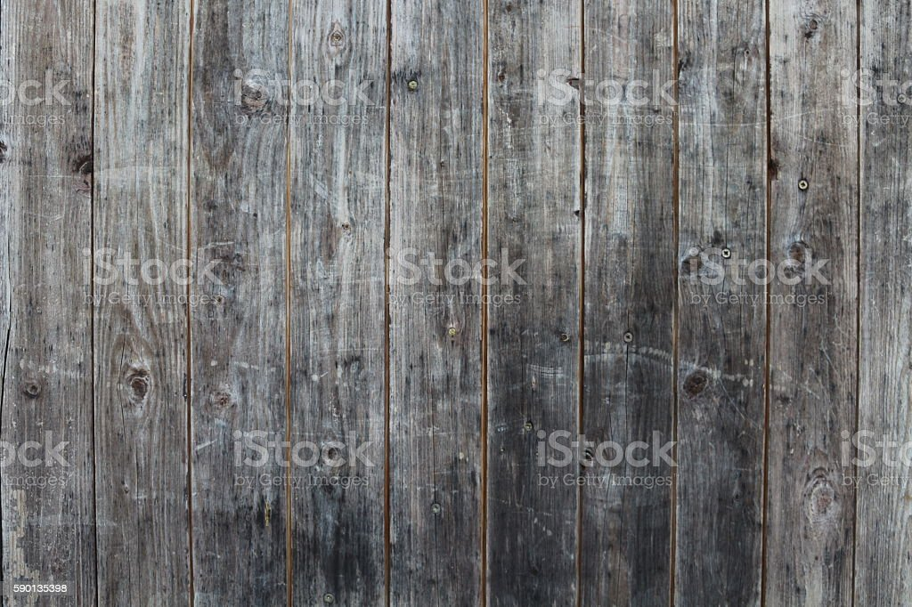 old wood textur stock photo