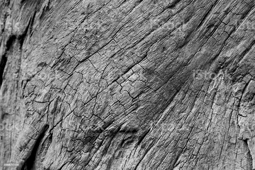 Old wood texture black and white royalty-free stock photo